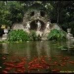 Trsteno botanical garden