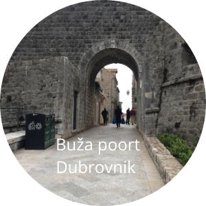 Dubrovnik Buža gate